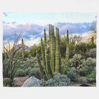 Por do sol do Succulent de Scottsdale Cobertor De Velo
