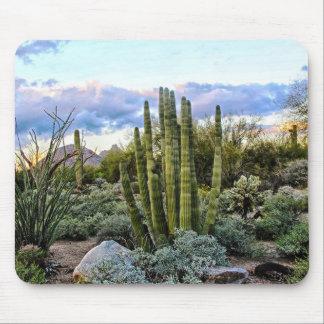 Por do sol do Succulent de Scottsdale Mousepad