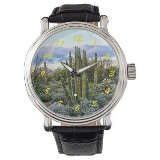 Por do sol do Succulent de Scottsdale Relógio