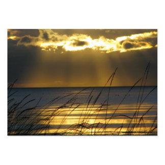 Por do sol dourado cartão de visita grande