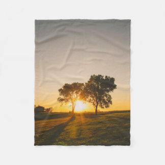 por do sol gêmeo da árvore cobertor de velo