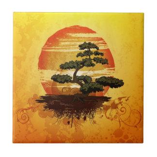 Por do sol japonês da árvore dos bonsais