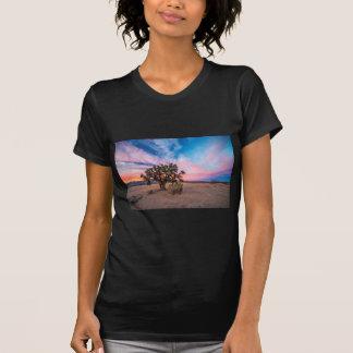 Por do sol no Mojave Camisetas
