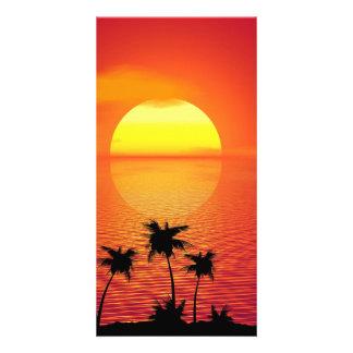 Por do sol tropical cartão