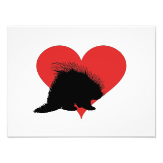 Porco- com um coração vermelho grande impressão de foto