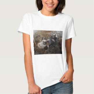 Porco engraçado do animal de estimação da camisa camisetas