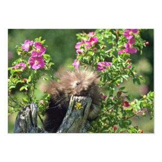 Porco--jovem em flores selvagens do rosa convite 12.7 x 17.78cm
