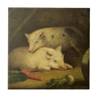 Porcos por George Morland
