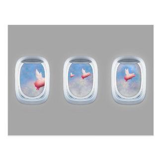 Porcos que voam após o cartão das janelas do avião