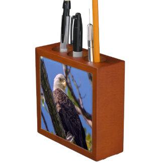 Porta-caneta Organizador da mesa da águia americana
