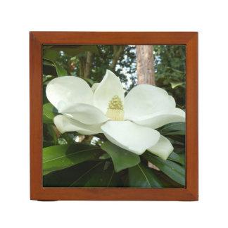 Porta Caneta Organizador Grandiflora da mesa da magnólia