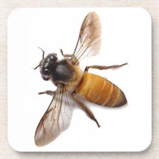 Porta-copo Abelha do mel