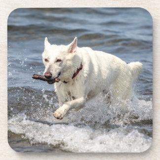 Porta-copo Alemão branco Shepard no lago George