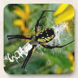 Porta-copo Aranha impressionante da esfera da foto na Web