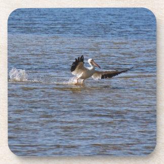 Porta-copo Aterragem do pelicano