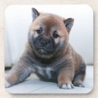 Porta-copo Cão de filhote de cachorro distorcido bonito