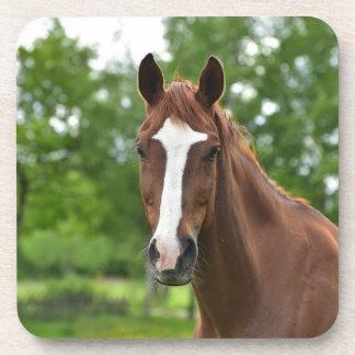 Porta-copo Cara do cavalo com marcação