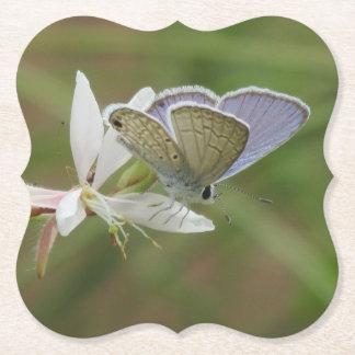 Porta-copo De Papel Butterfy azul marinho na flor de Gaura