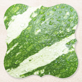 Porta-copo De Papel Foto molhada, verde, nova, listrada da abóbora