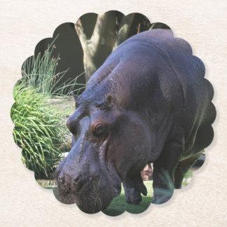 Porta-copo De Papel Hipopótamo AJ17