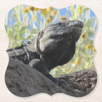 Porta-copo De Papel iguana Espinhoso-atada