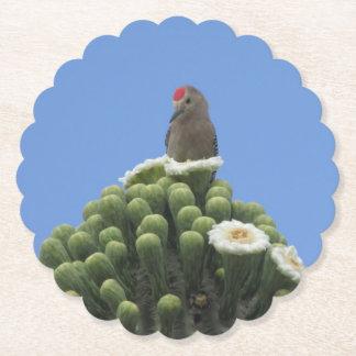 Porta-copo De Papel Pica-pau de Gila em flores do Saguaro