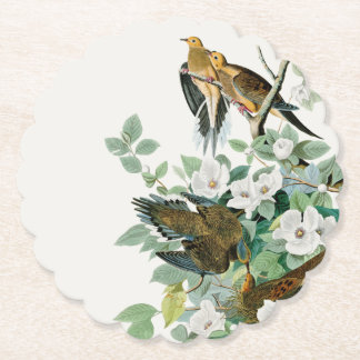 Porta-copo De Papel Pomba da tartaruga de Carolina, pássaros de