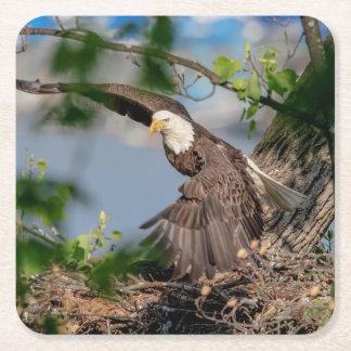 Porta-copo De Papel Quadrado Águia americana que sae do ninho