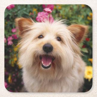 Porta-copo De Papel Quadrado Amor do cão de filhote de cachorro de Terrier de
