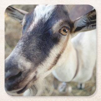 Porta-copo De Papel Quadrado animal de fazenda bonito da cabra
