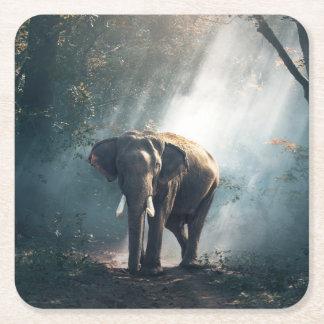 Porta-copo De Papel Quadrado Elefante asiático em um esclarecimento Sunlit da