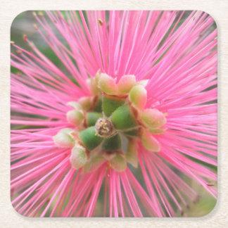 Porta-copo De Papel Quadrado Flor cor-de-rosa da árvore de goma