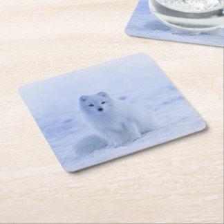 Porta-copo De Papel Quadrado Fox ártico de Islândia