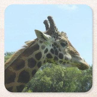 Porta-copo De Papel Quadrado Grupo da porta copos do girafa