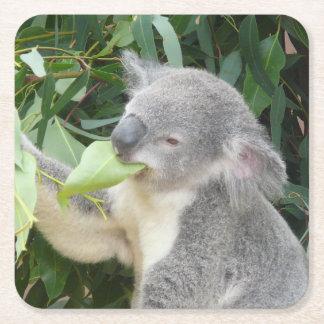 Porta-copo De Papel Quadrado Koala que come a folha da goma