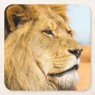 Porta-copo De Papel Quadrado Leão grande que olha longe
