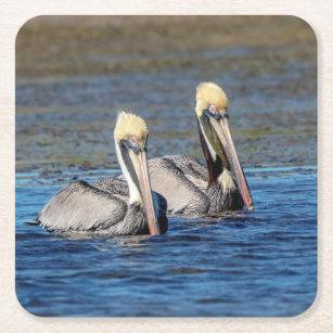 Porta-copo De Papel Quadrado Pares de pelicanos