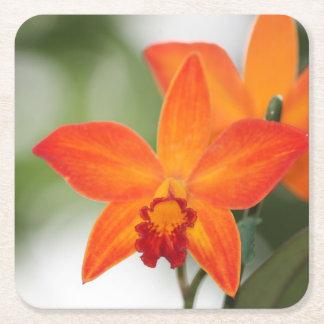 Porta-copo De Papel Quadrado Porta copos tropical do papel da orquídea