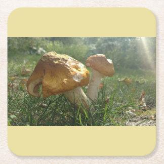 Porta-copo De Papel Quadrado Portas copos do cogumelo