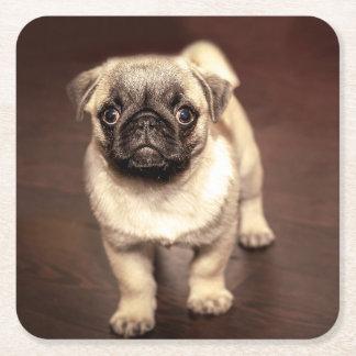 Porta-copo De Papel Quadrado Pug bonito do filhote de cachorro, cão, animal de