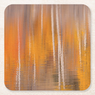 Porta-copo De Papel Quadrado Reflexões do outono na lagoa | Winthrop do castor,