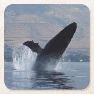 Porta-copo De Papel Quadrado rompimento da baleia de humpback