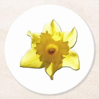 Porta-copo De Papel Redondo Daffodil 1,0 da trombeta amarela