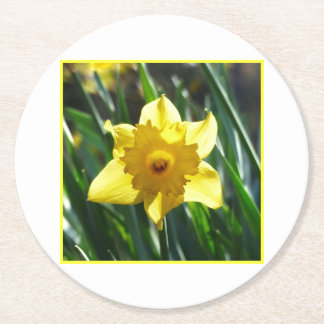 Porta-copo De Papel Redondo Daffodils bonito, narciso 03,3