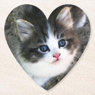 Porta-copo De Papel Retrato BONITO do gatinho