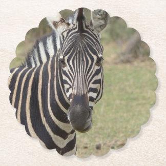 Porta-copo De Papel zebra