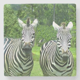 Porta-copo De Pedra 2 zebras bonitos