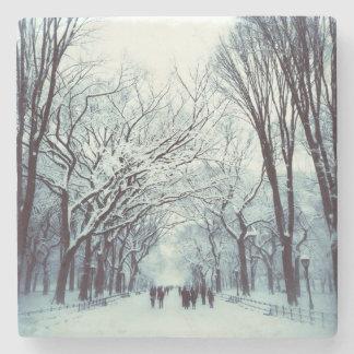 Porta-copo De Pedra A alameda do Central Park no inverno