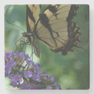 Porta-copo De Pedra Borboleta bonita de Swallowtail do tigre na flor