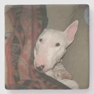 Porta-copo De Pedra Bull terrier Snuggled sob um geral (a cor)